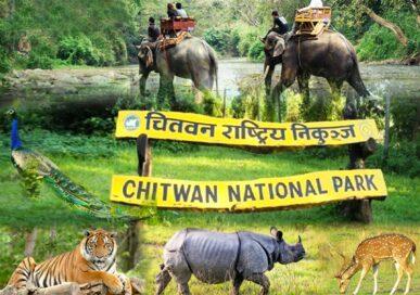 चितवन राष्ट्रिय निकुञ्जमा पर्यटकीय गतिविधि शुरु
